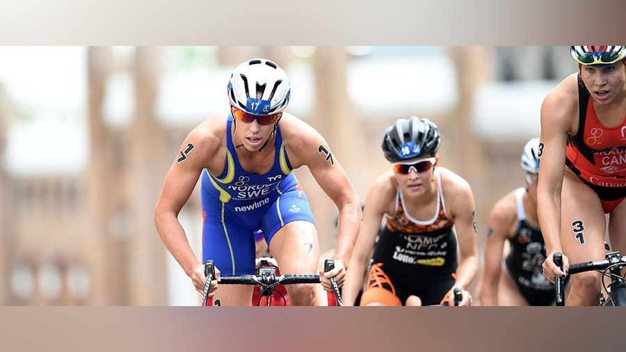 What we learned at #WTSAuckland