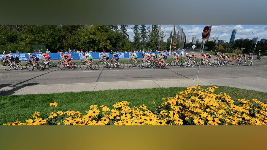 Fully stocked men's roster for WTS Edmonton