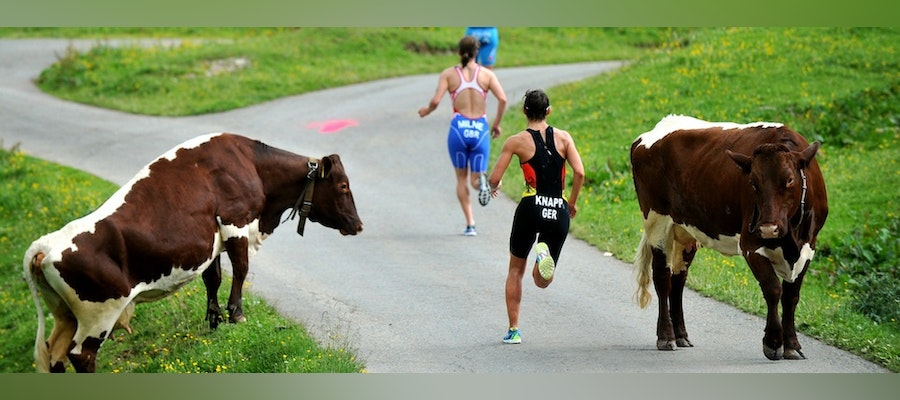 What we learned from World Triathlon Series Kitzbuehel